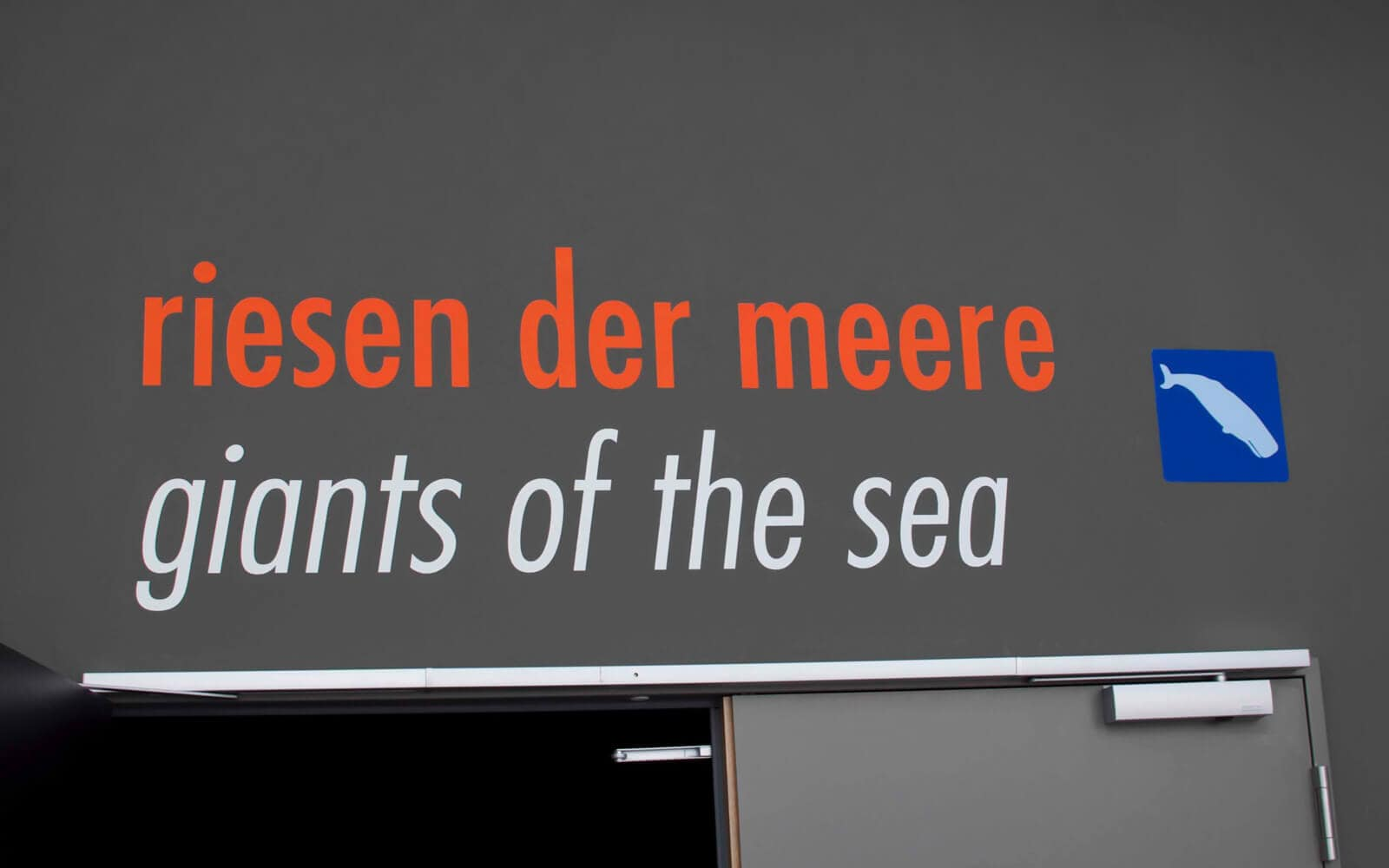 Innenausstattung Ozeaneum