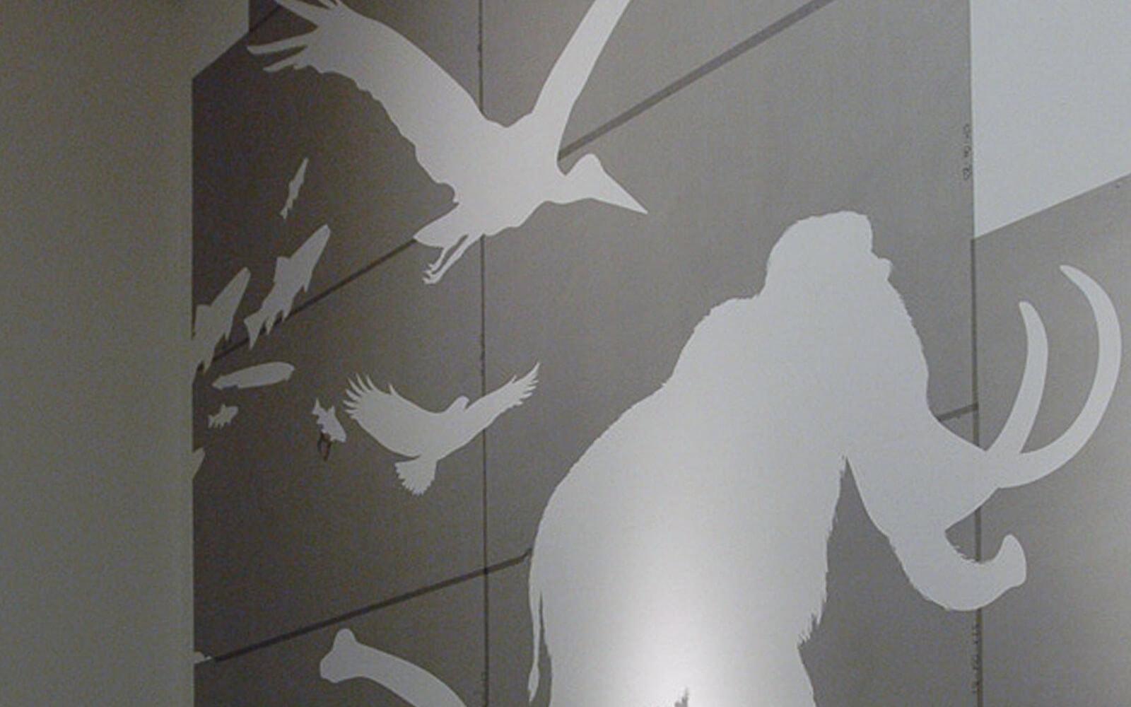 Wandgestaltung Darwineum